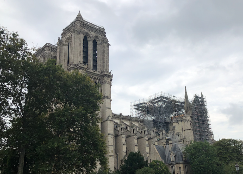 Notre Dames after the fire